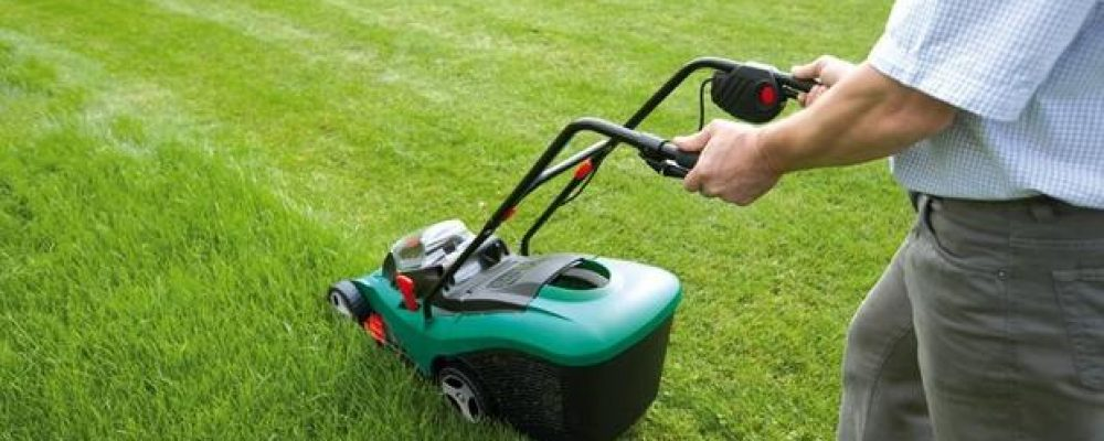 Grass Treatment that You Have to Do
