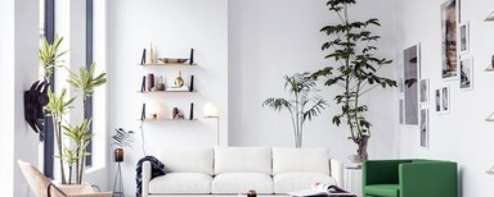 Tips for Caring for Furniture Made of Wood