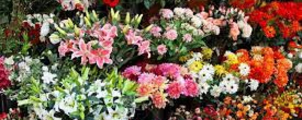What to Do When Choosing Flowers for Loved One